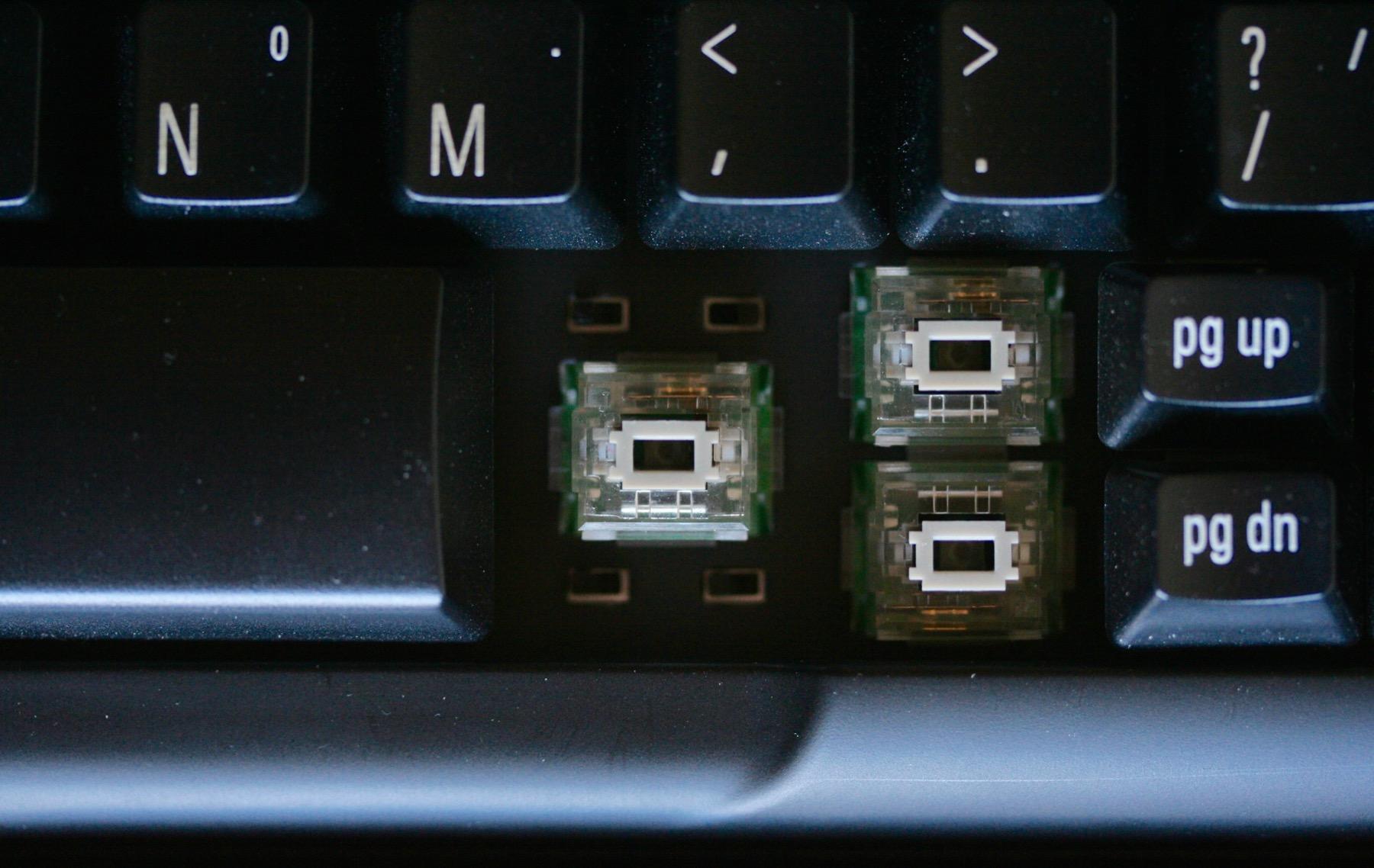 Switches like Sardines.jpg