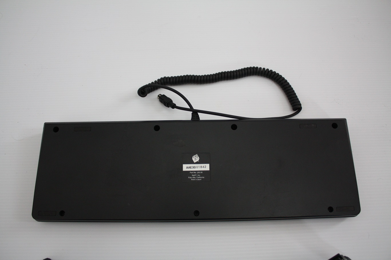 NeXT AAE - keyboard case back.jpg