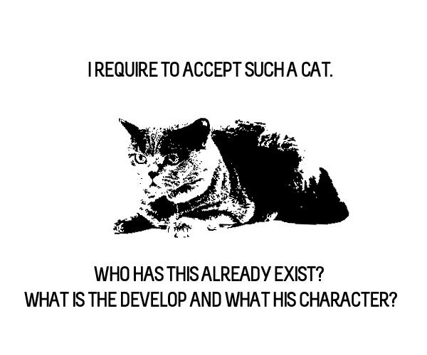 DT_cat.jpg