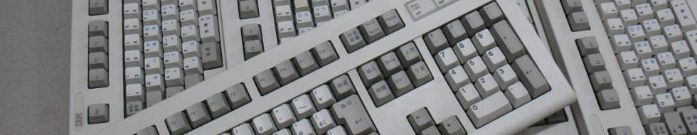 IBM Japan 5576.jpg