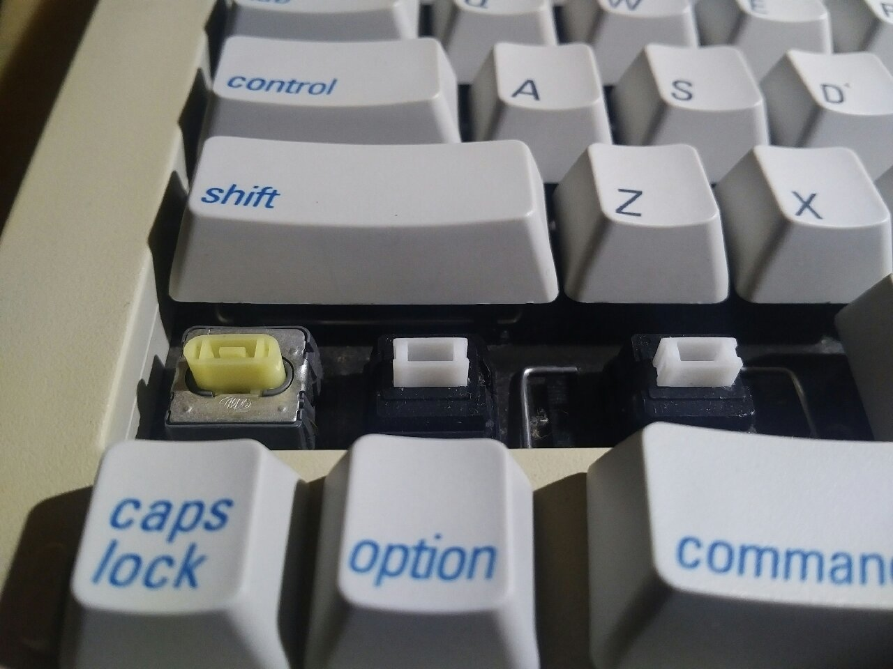 keyboard key switches.jpg