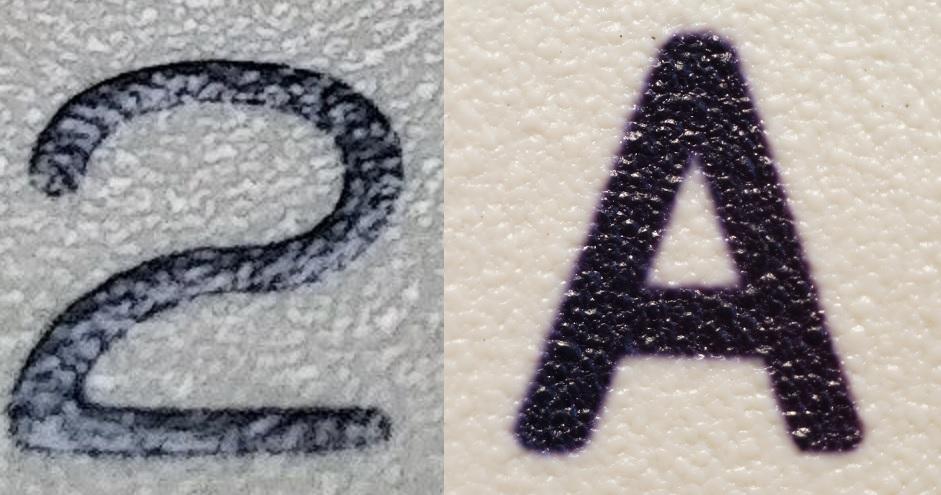 print vs dyesub.jpg
