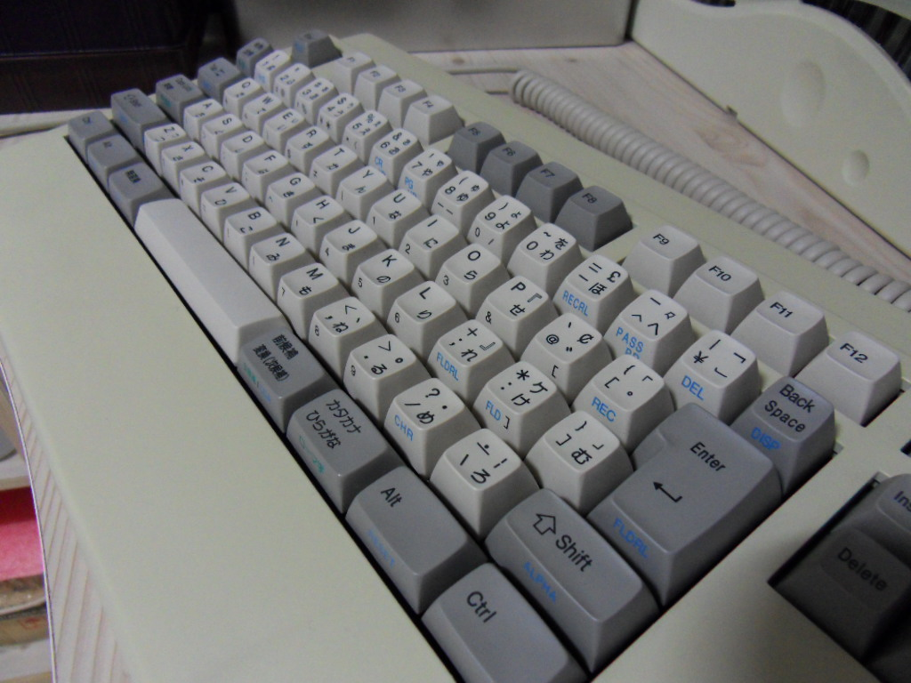 SDC10954.JPG